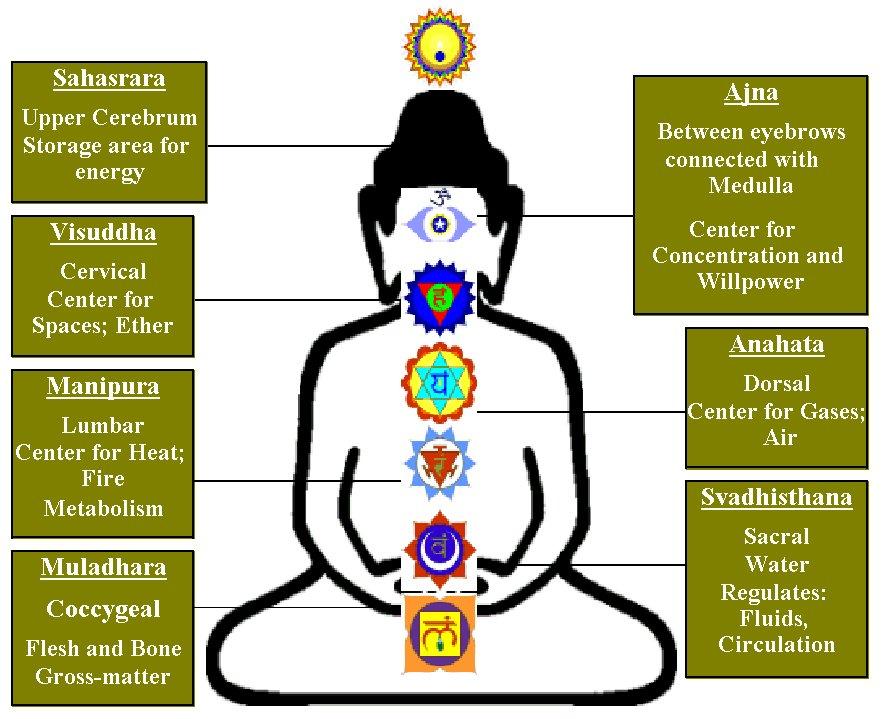 chakra meditation : chakras diagram - findchart.co